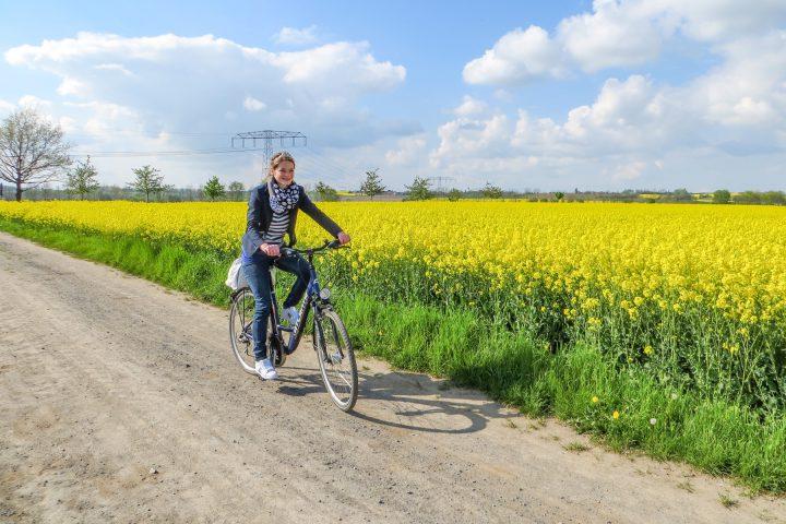 Drei Radfahrer fahren auf dem Elberadweg auf den Betrachter zu. Wiesen und die Elbe. Die Frau auf dem vordersten Fahrrad winkt dem Fotografen zu.