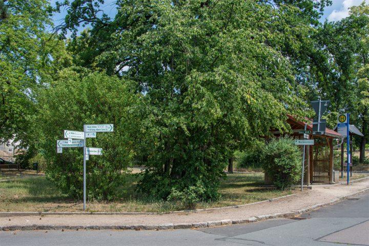 Radknotenpunkt am Sachsenplatz